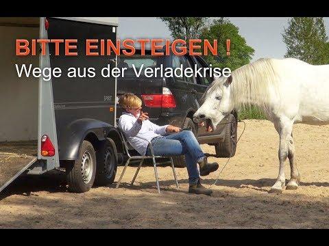 Bitte Einsteigen - Verladetraining mit ways2liberty, Trailer I