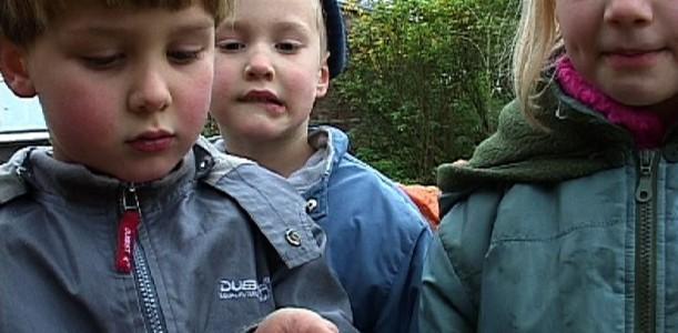 dokumentarfilm: Die Freinet-Kindertagesstätte Prinzhöfte