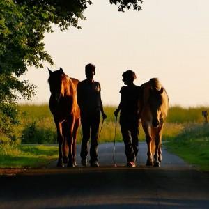 lehrfilm: Liberty – Best Film International – Equus Filmfestival NY